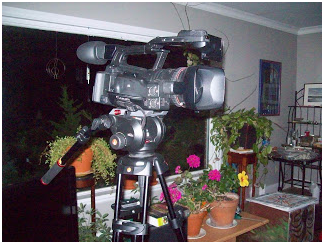 by jay wilson ed videos camera and plant stand