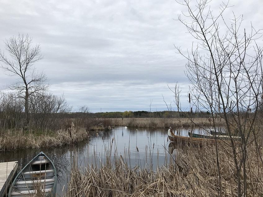 Wye Marsh. Photo credit Lisa Hirmerweb